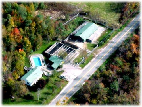 Aerial photo of German Shepherds of Munster Abbey Kennels in Minot, Maine,  home of Munster Abbey German Shepherd puppies.